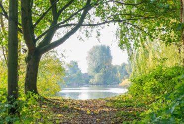 Doubling Nature in Cambridgeshire